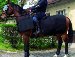Police Horse Riot Protection